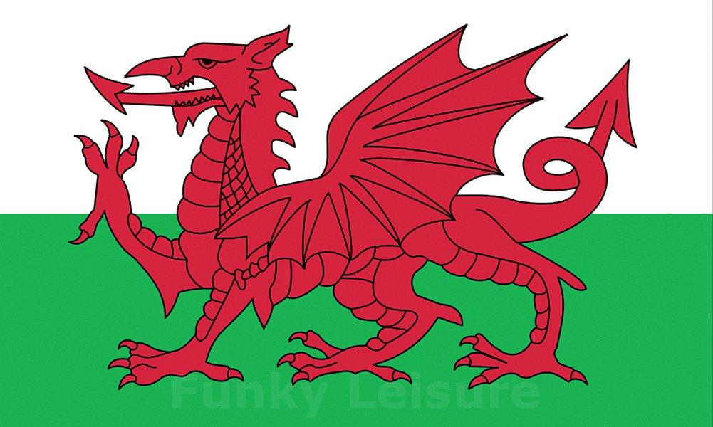 The Welsh Dragon - Y Ddraig Goch